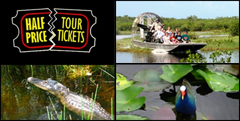$19 Everglade Airboat and Wildlife Tour