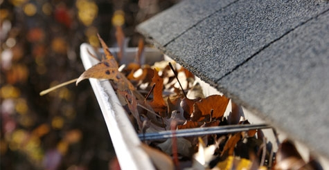 $119 for Gutter Cleaning and Minor Gutter Repairs for a Two-Story Home