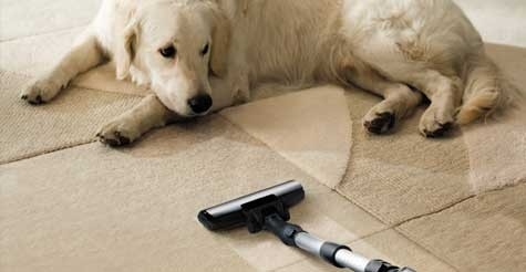 $55 for carpet cleaning up to 2000 square feet