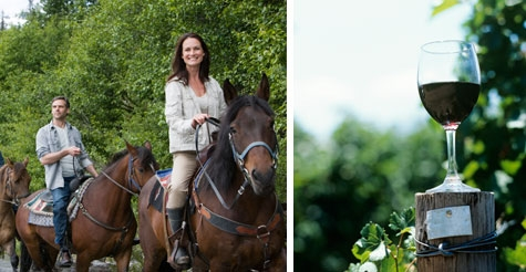 $99 for a wine tour on horseback of four wineries from Ride the Vines