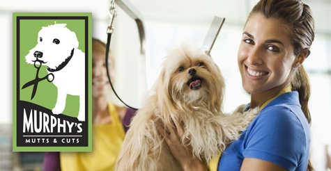 $15 dog grooming at Murphy's Mutts and Cuts