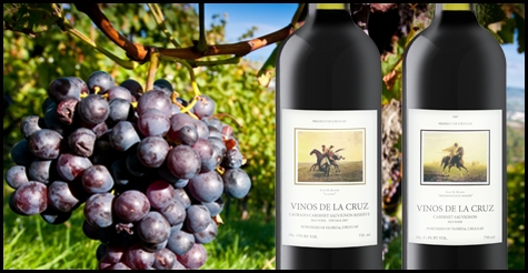 $25 for a $50 gift certificate toward any purchase of Vino de la Cruz Wines