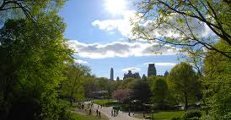 $19 for the Explore Central Park Walking Tour