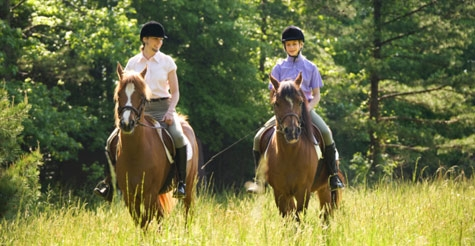 $49 for two hours of horseback riding lessons or two trail rides