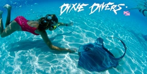$20 for a Snorkeling Trip at Dixie Divers