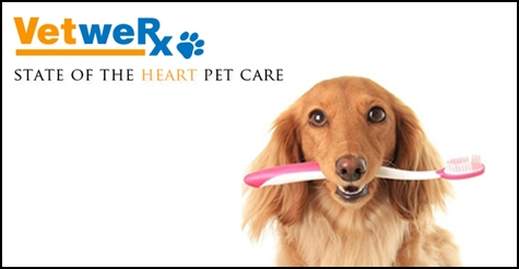 $149 for dental cleaning and more for pets from VetweRx