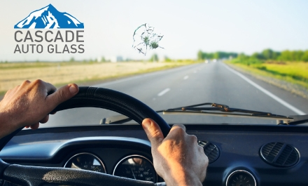 $19 buys $100 Towards a Windshield Replacement Plus 1 Free $25 restaurant .com gift card