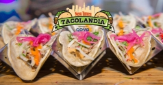 $20 for Tacolandia GA Ticket
